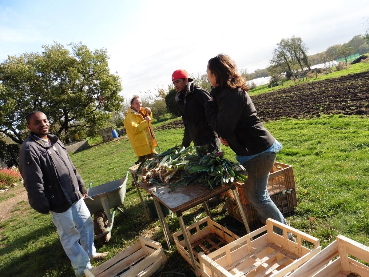 Nos jardiniers au travail